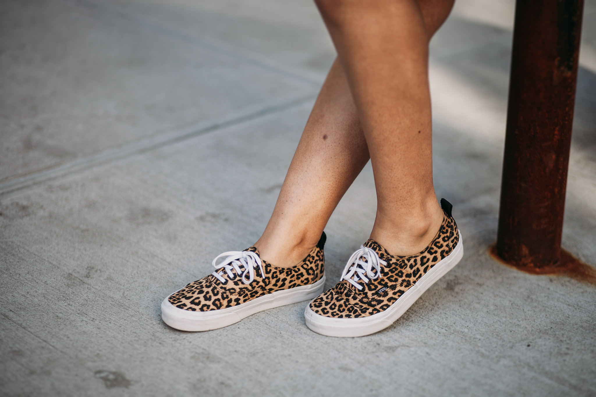Leopard Vans Authentic