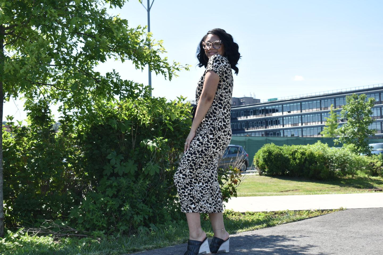 Leopard on Leopard
